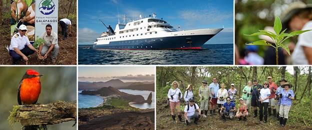 Celebrity Cruises Plants Over 30,000 New Trees