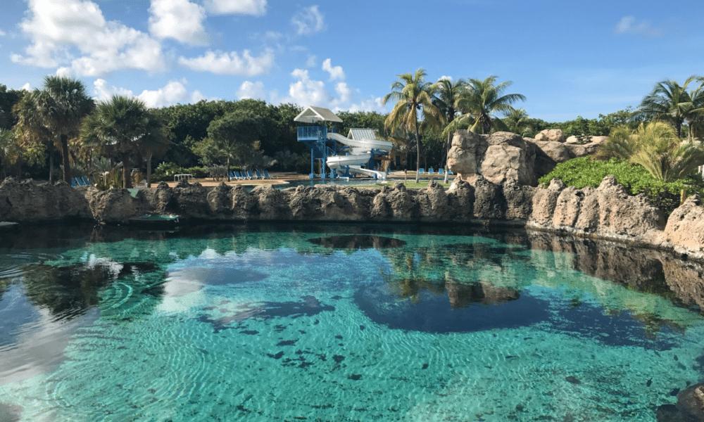 Cayman Turtle Centre Review