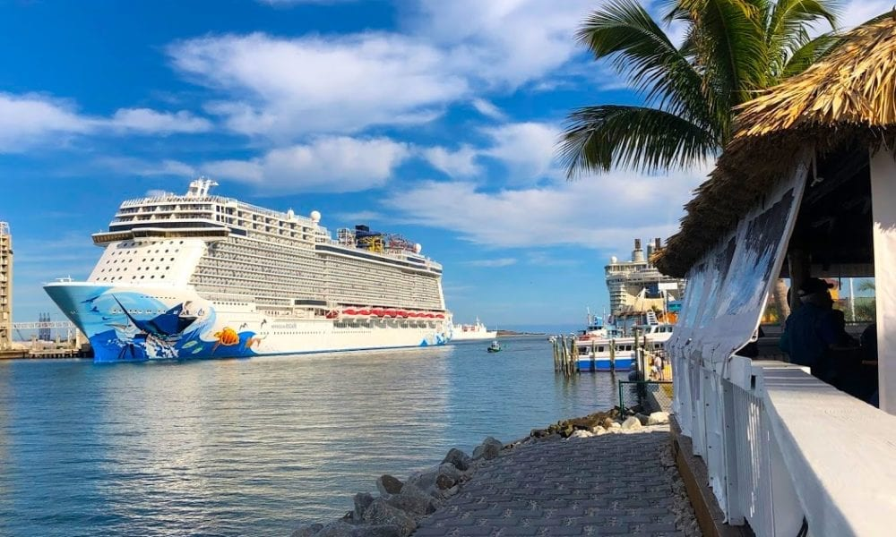 'We Want to See Cruise Ships Sail Again'